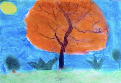 Imran's gulmohar tree